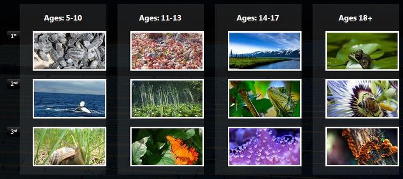 Earth-day-photo-contest-finalist-voting
